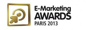 e-marketing awards 2013